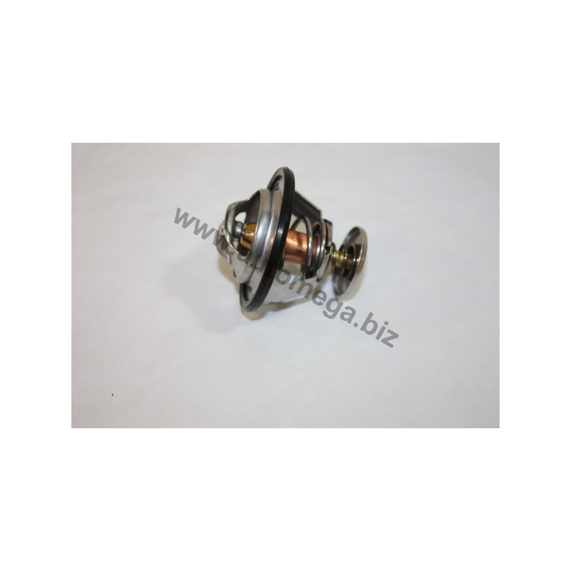 Thermostat d'eau AUTOMEGA [160080110]